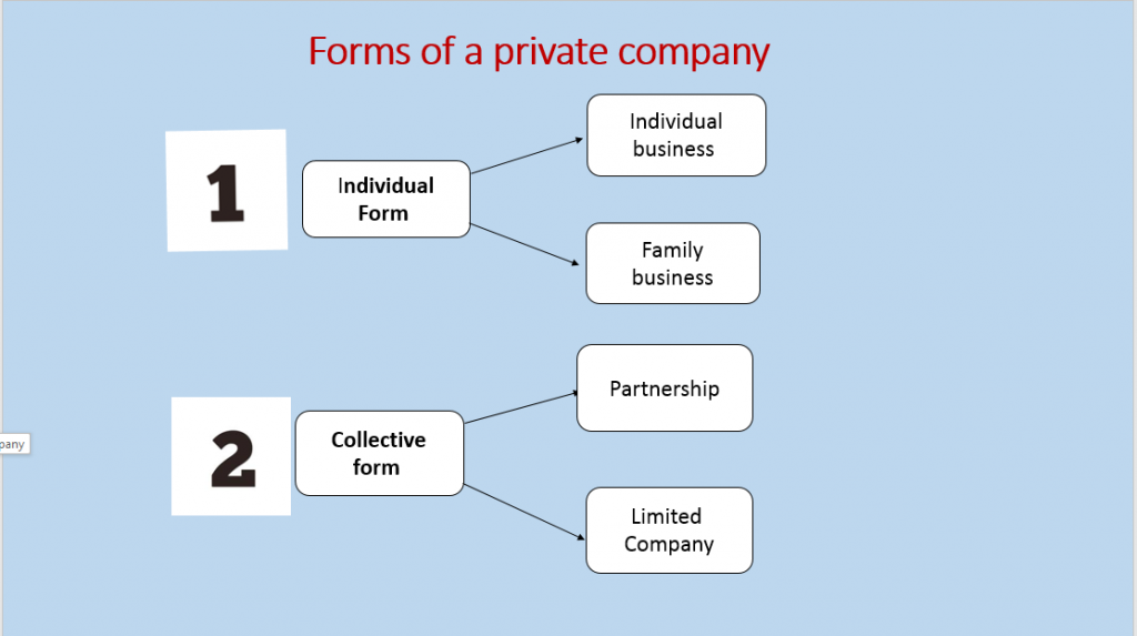 Types of companies in Italy5